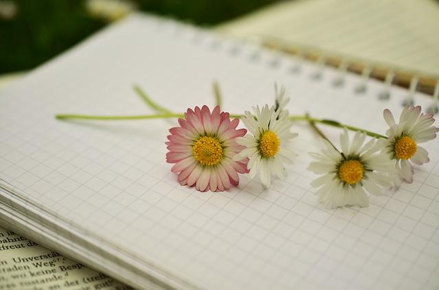 notebook-1405303_640