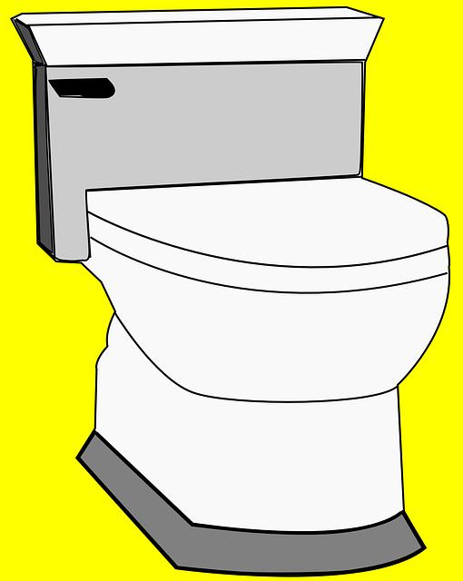 toilet-clean