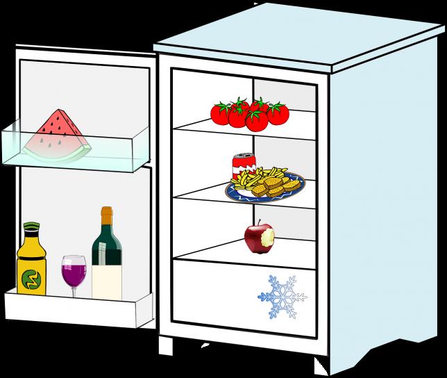 Livingalone-refrigerator