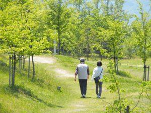 東京の公園の少ないエリアについて