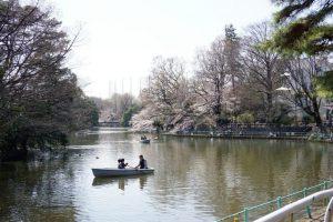 武蔵関公園。ボートが漕げる公演として有名な公園のようです。