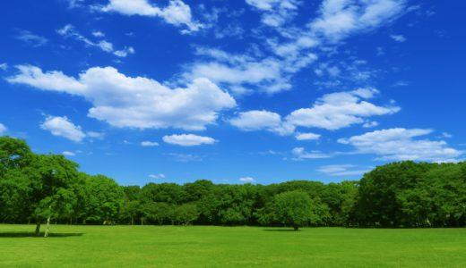 物件選びのポイントの一つ、公園。千葉県にあるアスレチックに力を入れている公園。
