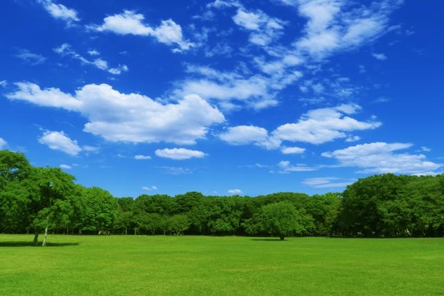 Chibapark