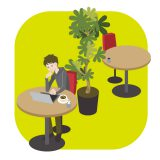 office-foliageplant
